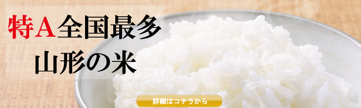 New rice special feature