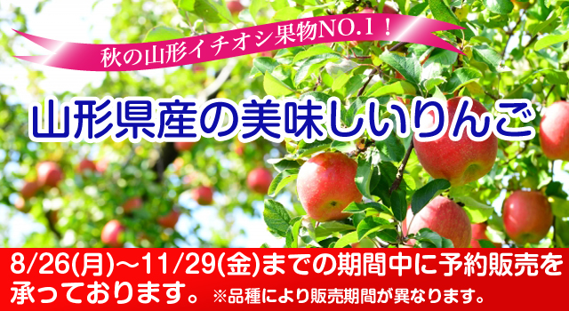 Delicious apple of special Yamagata Yamagata Prefecture product